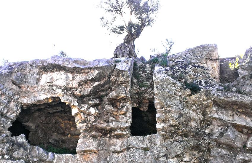 https://lurearqueologia.es/lu2021/wp-content/uploads/2014/01/yacimiento-arqueologico-puig-des-molins-ibiza-1.jpg
